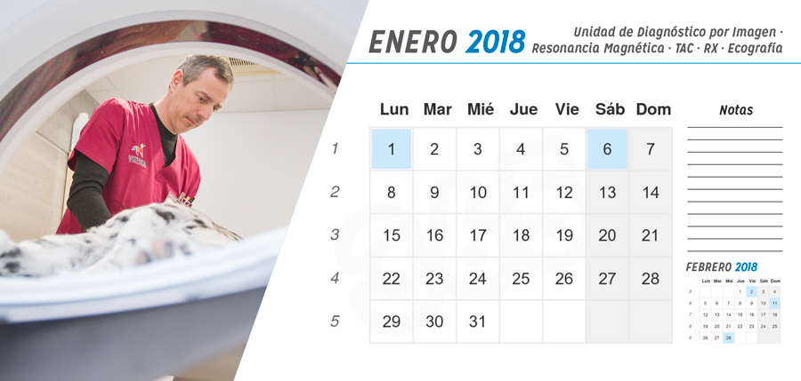 Calendario 2018 Vetsia
