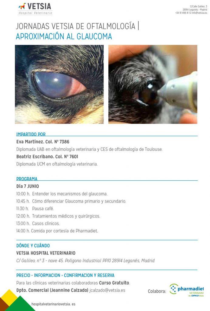 Newsletters VETSIA Hospital Veterinario